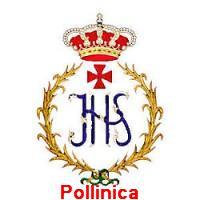 pollinica1